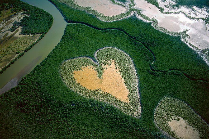 Mangroves in New Caledonia